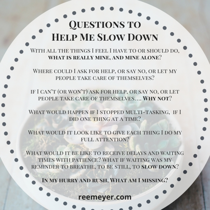 Questions to help me slow down