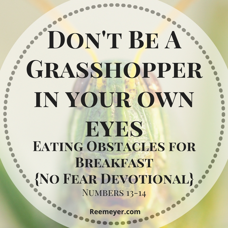 Are you facing challenges that make you feel like a grasshopper? Look to Joshua and Caleb and learn to eat those obstacles for breakfast. (No Fear Devotional from reemeyer.com)